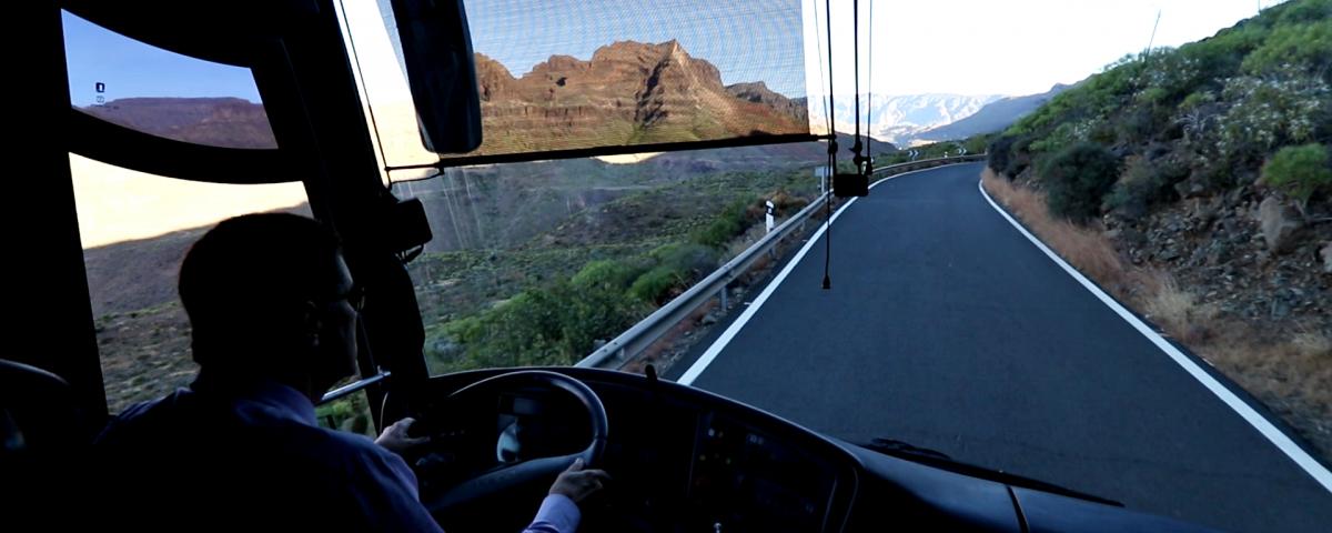 excursión en guagua